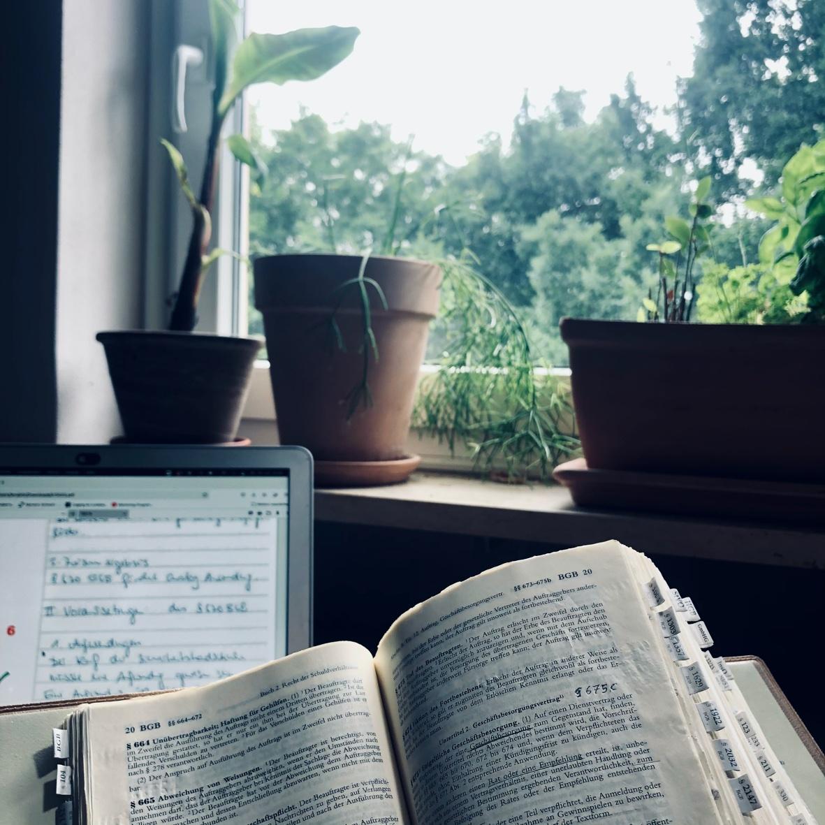 Auf dem Bild ist ein Schönfelder und ein Laptop mit einer Klausur zu sehen. Im Hintergrund befinden sich Büro-Pflanzen.